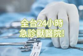 全台24小時急診獸醫院