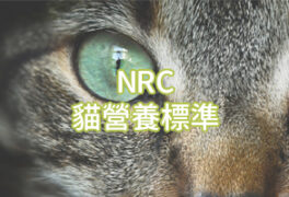 NRC 貓營養標準